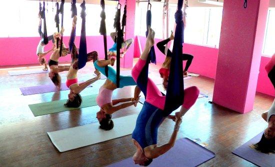 The Yoga Hangout SRQ