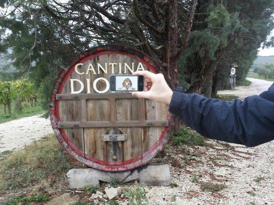 Tordandrea, Италия: Cantina Dionigi