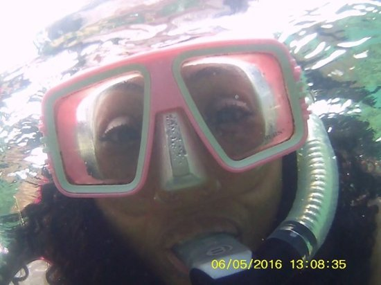 Mango Creek Lodge: Snorkeling
