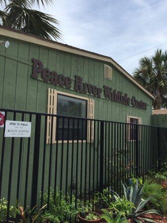 Peace River Wildlife Center: Lovely little wildlife center