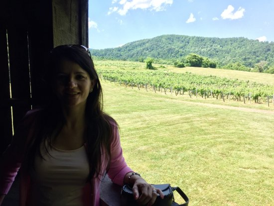 Sperryville, VA: Delightful visit and delicious wines.