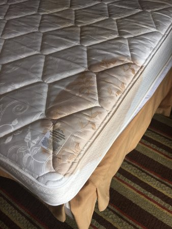 Resort at Governor's Crossing: This is the Mattress that awaited us after our Second room. We notified the manager. She called