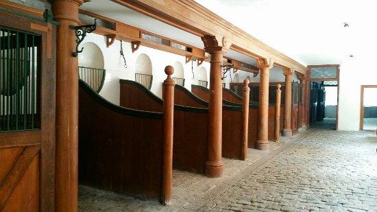 Haslev, Danimarka: IMG_20160609_213940_large.jpg