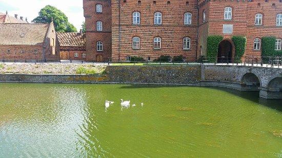Haslev, Danimarka: IMG_20160609_214259_large.jpg