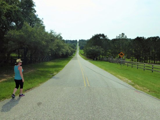 Lake County, Floryda: Headed up the mountain