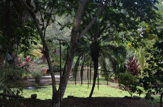 Hotel Ecofinca Amanwana