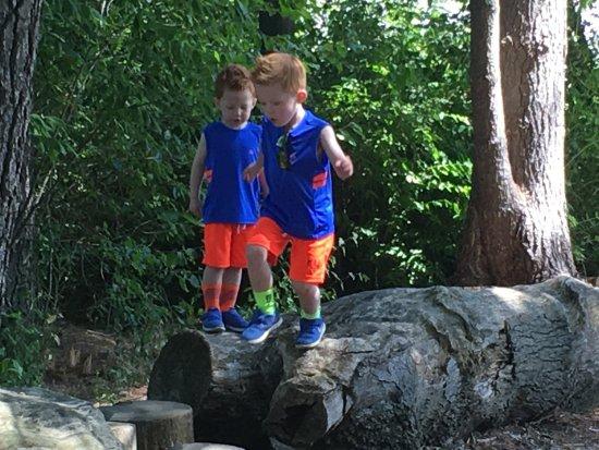 Beech Creek Botanical Garden & Nature Preserve: photo3.jpg