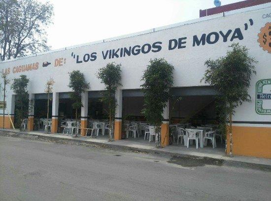 Los Vikingos de Moya