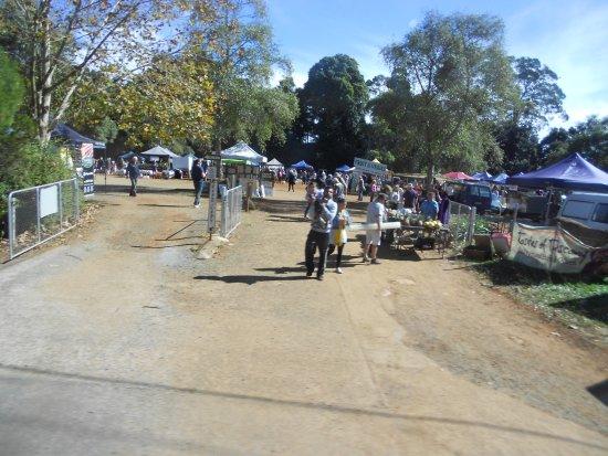 Eagle Heights, Australia: Mt Tamborine's Local Producers Market on sunday morning