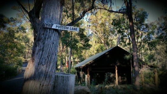 Tathra, أستراليا: 2016-06-13 18_large.jpg