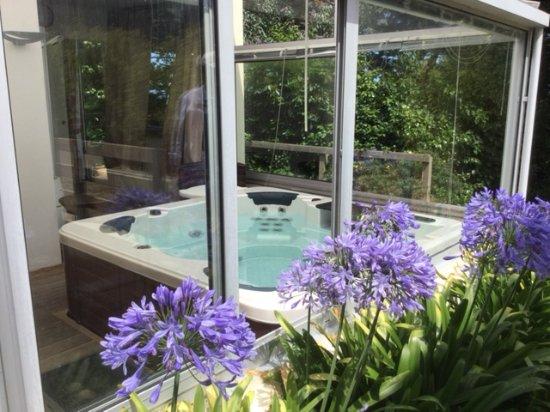 Villa des Pins : le Jaccuzzi dans la verrière vue sur Agapantes
