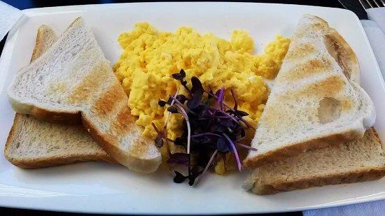 Timaru, Nieuw-Zeeland: Scrambled Eggs