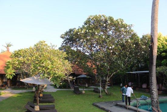 Foto de Peneeda View Beach Hotel