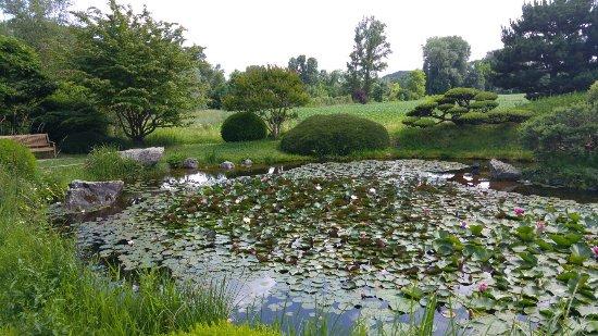 Jardin zen duerik borja largejpg with jardin zen photos for Jardin japonais chez soi