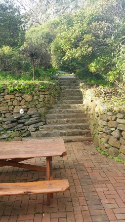 Gardenia House: 20160612_150845_large.jpg