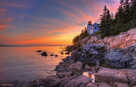 Seawall Campground: Bass Harbor Lighthouse