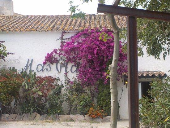 Borrassa, สเปน: Fachada desde el aparcamiento