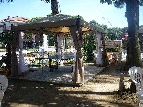 Hotel Mimosa: Area Bimbi all'aperto