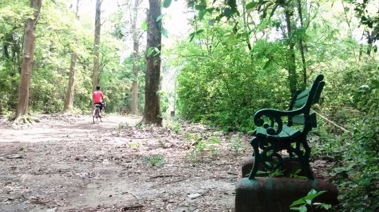 Bethuadahari Wildlife Sanctuary: There are benches for resting, at intervals.