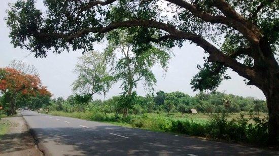 Bethuadahari Wildlife Sanctuary: The road to Bethuadahari from Kolkata.