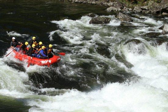 Lochsa River Rafting - ROW: Lochsa