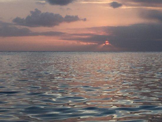 Villas Sur Mer: photo6.jpg