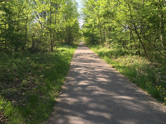 Traverse Area Recreation and Transportation Trails : Shady in spots