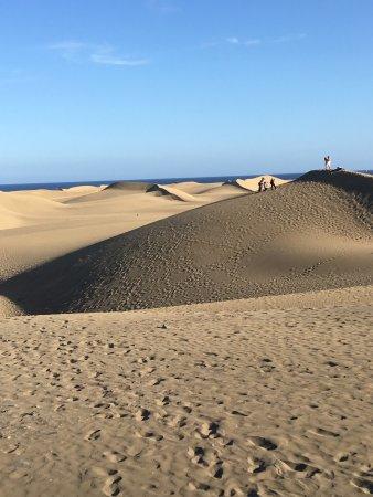 Paseo Costa Canaria: Veduta dal Paseo Canarii