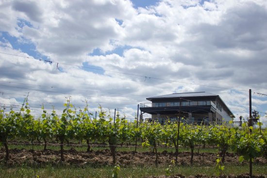 Vineland, Canada : Megalomaniac Winery