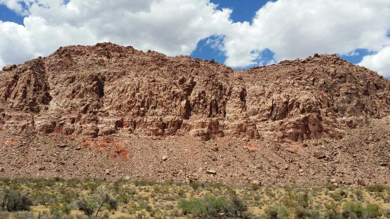 Red Rock Canyon National Conservation Area: Calico Basin Red Spring