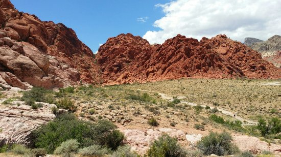 Red Rock Canyon National Conservation Area: Calico Basin Red Springs
