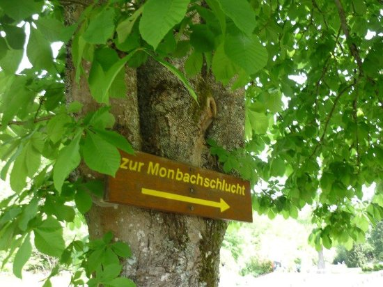 Bad Liebenzell, Germany: Im Monbachtal