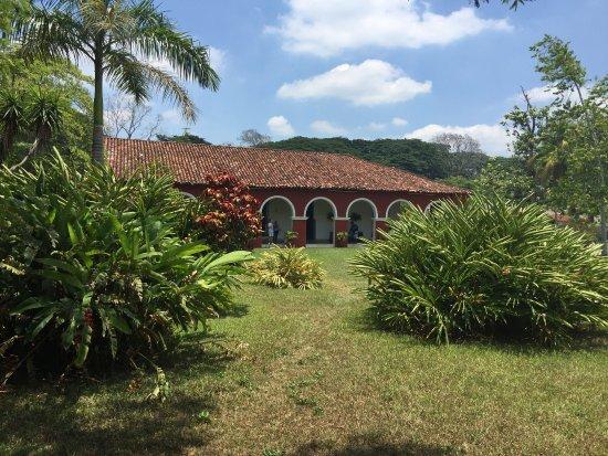 Hacienda Cacaotera La Luz