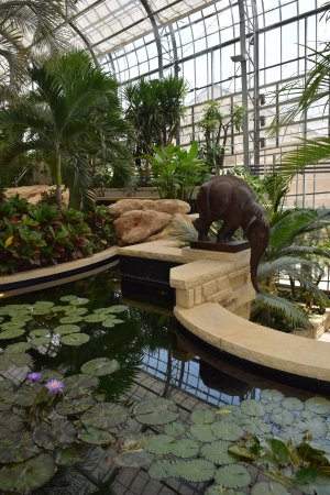 Lauritzen Gardens Omahau0027s Botanical Center: Pond With Elephant Fountain.