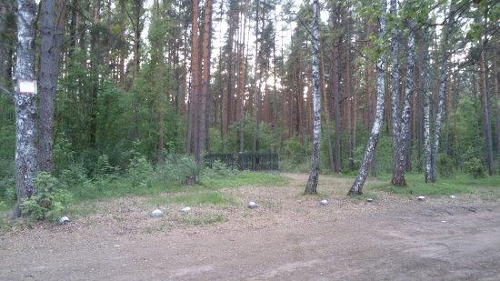 Bilde fra Glebychevo