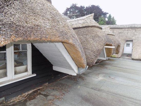 Bickleigh, UK: terrasse autour de la chaumiére.