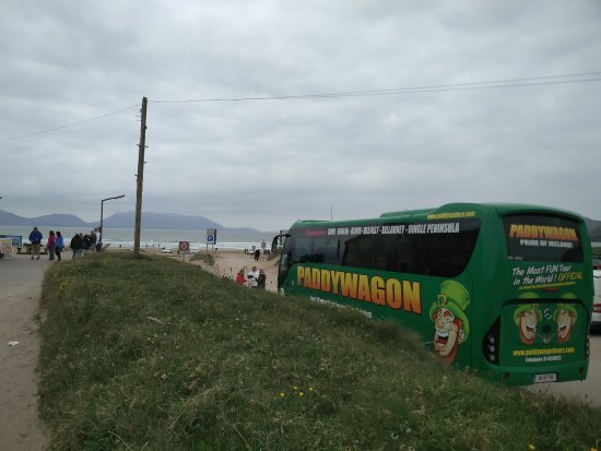 ‪Paddywagon Day Tours‬