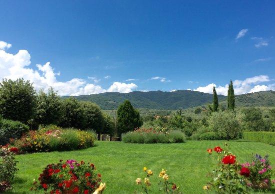 Castiglion Fiorentino, Italia: Paradise on earth