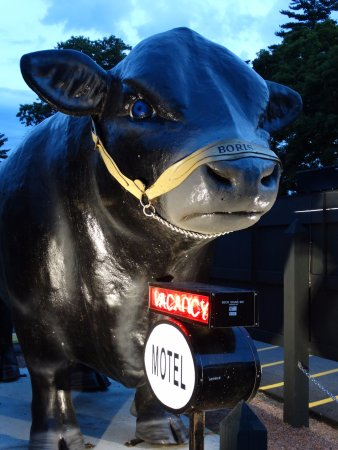 """Wautoma, WI: """"Boris the Bull"""" located behind their sign makes this place easy to find!"""