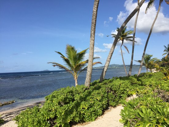 The Palms At Pelican Cove Beautiful Time In St Croix And