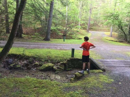 Seneca State Forest: quiet and secluded