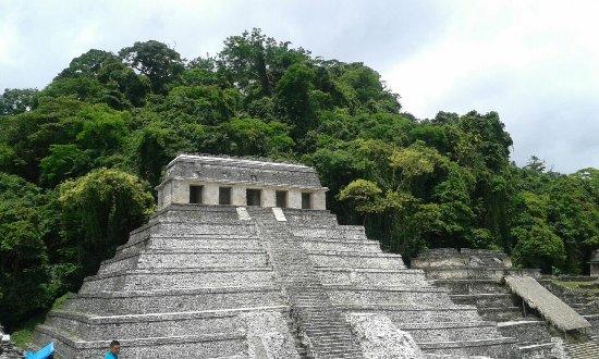 Los Leones: Inolvidable Palenque..