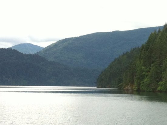 Shoreline Tours and Charters: Shoreline Boat Tour - Harrison Lake - Echo Island to the right
