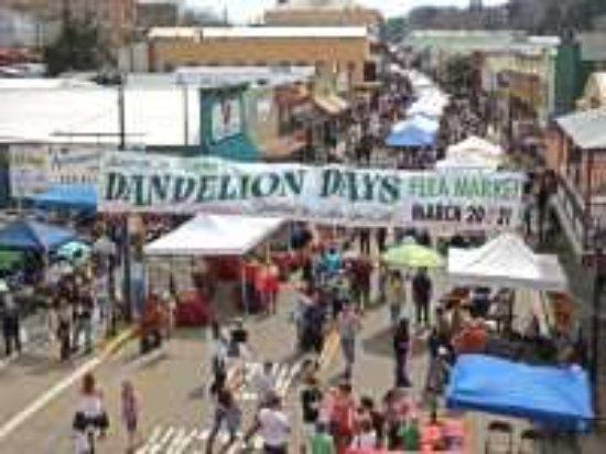 Dandelion Days, Jackson
