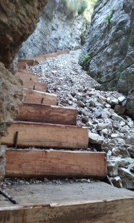 Sentiero Forra del Lupo