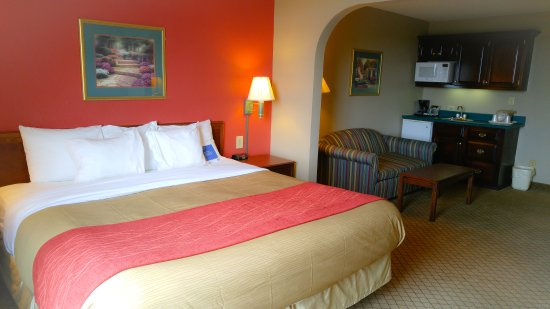 Comfort Inn & Suites: Standard Suite with one king bed and sofa bed