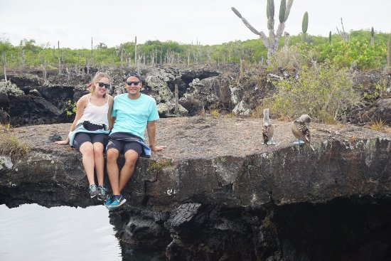 """Puerto Villamil, Equador: """"Classic photo spot"""" according to our tour guide. You can see the sea turtles directly through t"""