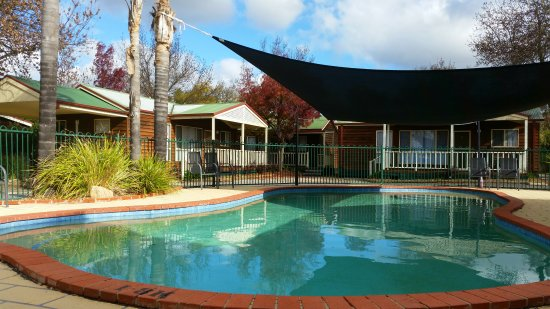 BIG4 Albury Tourist Park: Pool