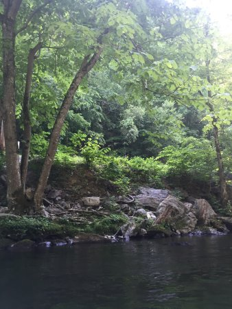Townsend, TN: Fun times on the river with friends surrounded by beautiful scenery. You could spend a whole day