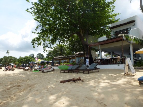 the hammock samui beach resort photo photo0 jpg   picture of the hammock samui beach resort mae nam      rh   tripadvisor co nz